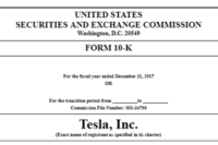 Foto: Das SEC-Filing (UNITED STATES SECURITIES AND EXCHANGE COMMISSION, Washington, D.C. 20549, FORM 10-K) zeigt unter anderem, wo Tesla das größte Wachstum verzeichnen konnte. | © ir.tesla.com
